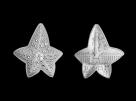 Moneda de argint Boucheron