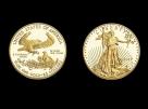 Moneda aur 1/2 oz American Eagle - la comanda