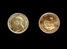 Moneda aur 1/10 oz Krugerrand