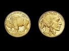 Moneda aur 1 oz American Buffalo - la comanda