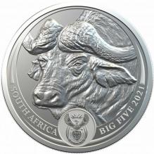 Big 5 Buffalo Brilliant 1 oz silver