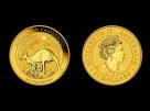 Moneda de aur 1/10 oz Kangaroo