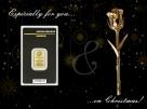 CADOU ROSA GOLD 1